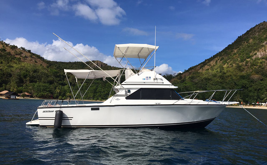 Trimmer fiberglass speedboat
